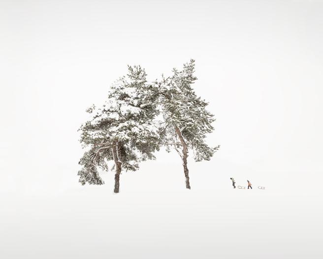 2019-Shelter